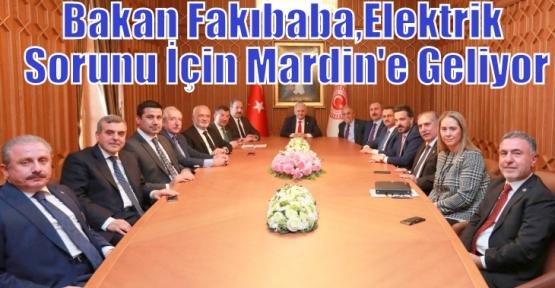 Bakan Fakıbaba,Elektrik Sorunu İçin Mardin'e Geliyor