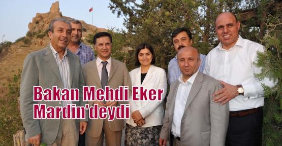 Bakan Mehdi Eker Mardin'deydi