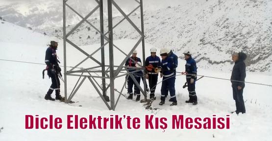 Dicle Elektrik'te Kış Mesaisi