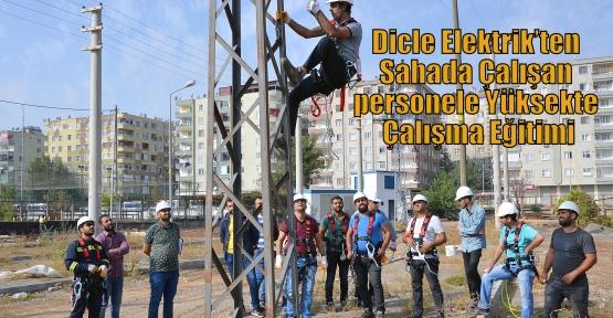 Dicle Elektrik'ten Sahada Çalışan personele Yüksekte Çalışma Eğitimi