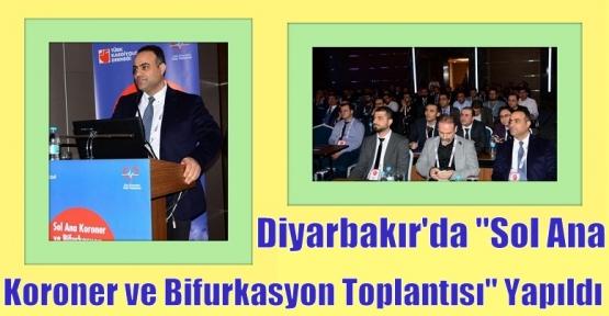"""Diyarbakır'da """"Sol Ana Koroner ve Bifurkasyon Toplantısı"""" yapıldı."""