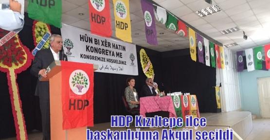 HDP Kızıltepe ilçe başkanlığına Akgül seçildi