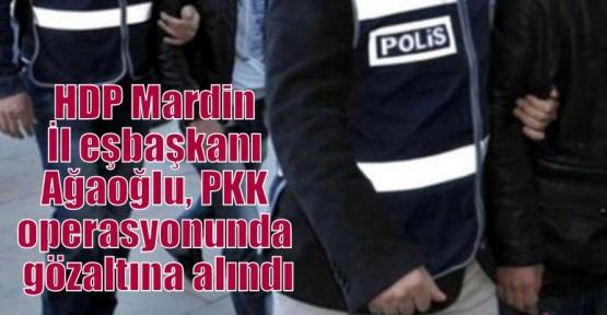 HDP Mardin İl eşbaşkanı Ağaoğlu, PKK operasyonunda gözaltına alındı