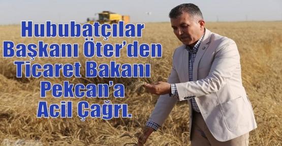 Hububatçılar Başkanı Öter'den Ticaret Bakanı Pekcan'a Acil Çağrı.