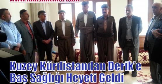 Kuzey Kürdistandan Derik'e Baş Sağlığı Heyeti Geldi