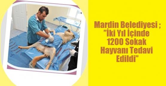 """Mardin Belediyesi ;""""İki Yıl İçinde 1200 Sokak Hayvanı Tedavi Edildi"""""""
