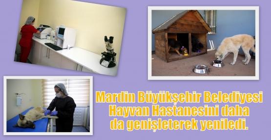 Mardin Büyükşehir Belediyesi Hayvan Hastanesini daha da genişleterek yeniledi.