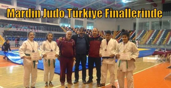 Mardin Judo Türkiye Finallerinde