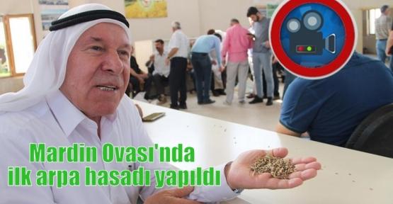 Mardin Ovası'nda ilk arpa hasadı yapıldı