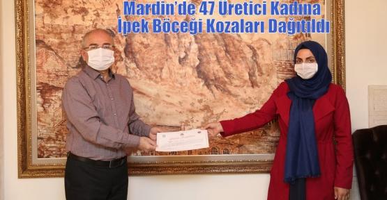 Mardin'de 47 Üretici Kadına İpek Böceği Kozaları Dağıtıldı