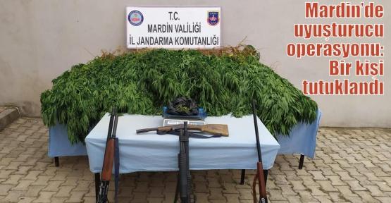 Mardin'de uyuşturucu operasyonu: Bir kişi tutuklandı
