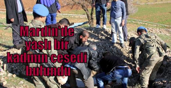 Mardin'de yaşlı bir kadının cesedi bulundu