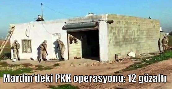 Mardin'deki PKK operasyonu: 12 gözaltı