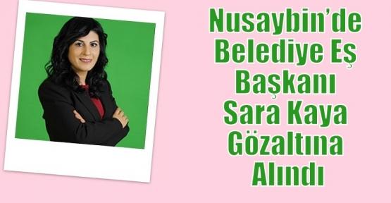 Nusaybin'de Belediye Eş Başkanı Sara Kaya Gözaltına Alındı.