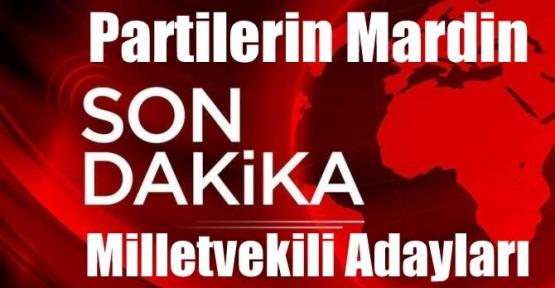 Partilerin Mardin Milletvekili Adayları