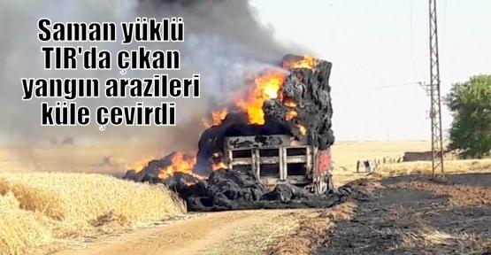 Saman yüklü TIR'da çıkan yangın arazileri küle çevirdi