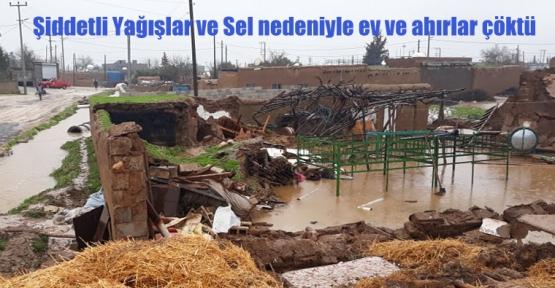 Şiddetli Yağışlar ve Sel nedeniyle ev ve ahırlar çöktü