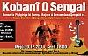 Nusaybin'de  Rojava ve Şengal için yardım konseri Düzenleniyor