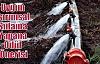 Uygun Tarımsal Sulama Yapana Ödül Önerisi