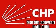 CHP'nin Mardin Belediye adayları belli...