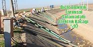 Dicle Elektrik ;Tarımsal Sulamadaki Elektrik...