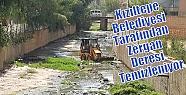 Kızıltepe Belediyesi Tarafından Zergan...