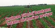 Kızıltepe Çiftçisi'Damlama Sulama...