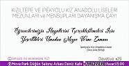 Kızıltepe Lisesi Ve İpekyolu Kız Anadolu...