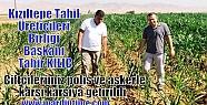 Kızıltepe Tahıl Üreticileri Birliği...