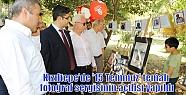 Kızıltepe'de '15 Temmuz' temalı fotoğraf...