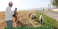 Kuraklıktan etkilenen çiftçinin kredi...