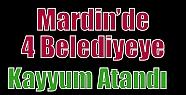 Mardin'de 4 Belediyeye Kayyum Atandı