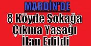 Mardin'de 8 Köyde Sokağa Çıkma Yasağı...