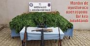 Mardin'de uyuşturucu operasyonu: Bir...