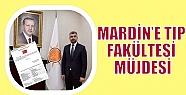 MARDİN'E TIP FAKÜLTESİ MÜJDESİ