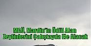 MAÜ, Mardin'in Ödül Alan Zeytinlerini...