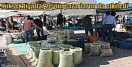 Yüksek fiyatlar zeytin pazarlarını da...