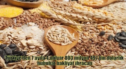 Türkiye'den 7 ayda 4 milyar 803 milyon 497 bin dolarlık hububat bakliyat ihracatı