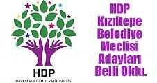 HDP Kızıltepe Belediye Meclisi Adayları Belli Oldu.