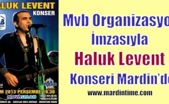 Mvb Organizasyon İmzasıyla Haluk Levent  Konseri Mardin'de